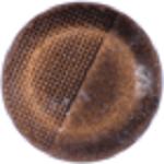 Bruine mini petite click 12mm